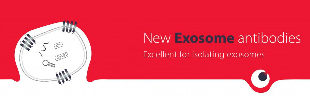 Exosome isolation
