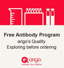 Free Program