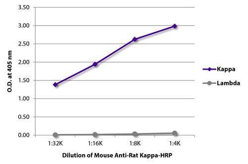 ARG23832 Mouse Anti Rat Kappa Light Chain Antibody [K4F5] (HRP) FLISA Image